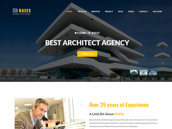 Raees – Free Responsive Architecture / Architect Template